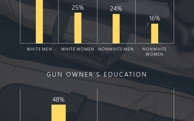 Gun Ownership Infographic – Display Data Visually