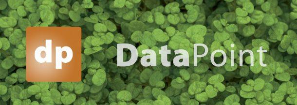 datapoint promo