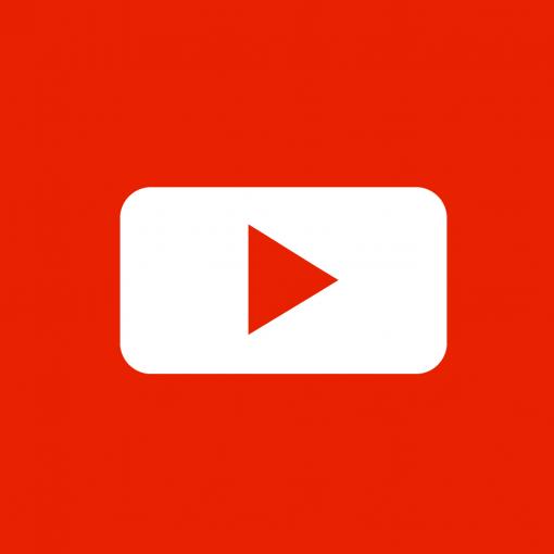 Dynamic Videos